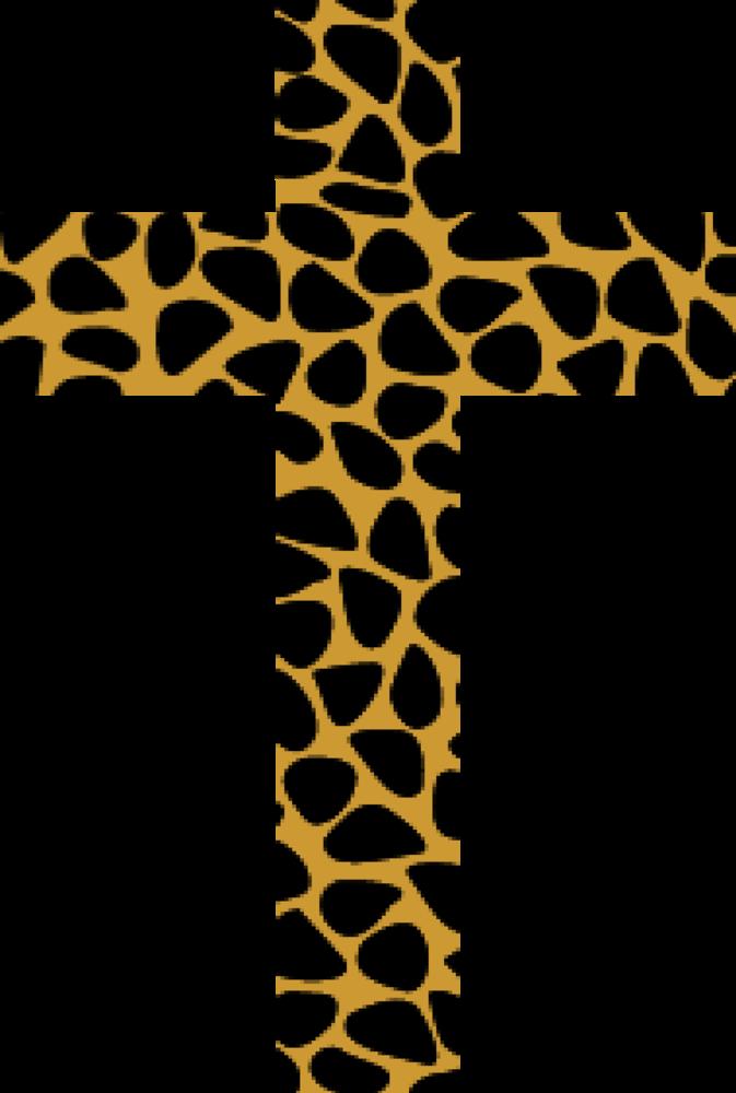 673x1000 J.a.z.e Attire Leopard Print Cross