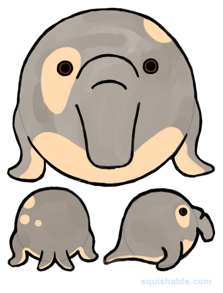 450x592 Elephant Seal Clipart Sketch Free Collection Download And Share