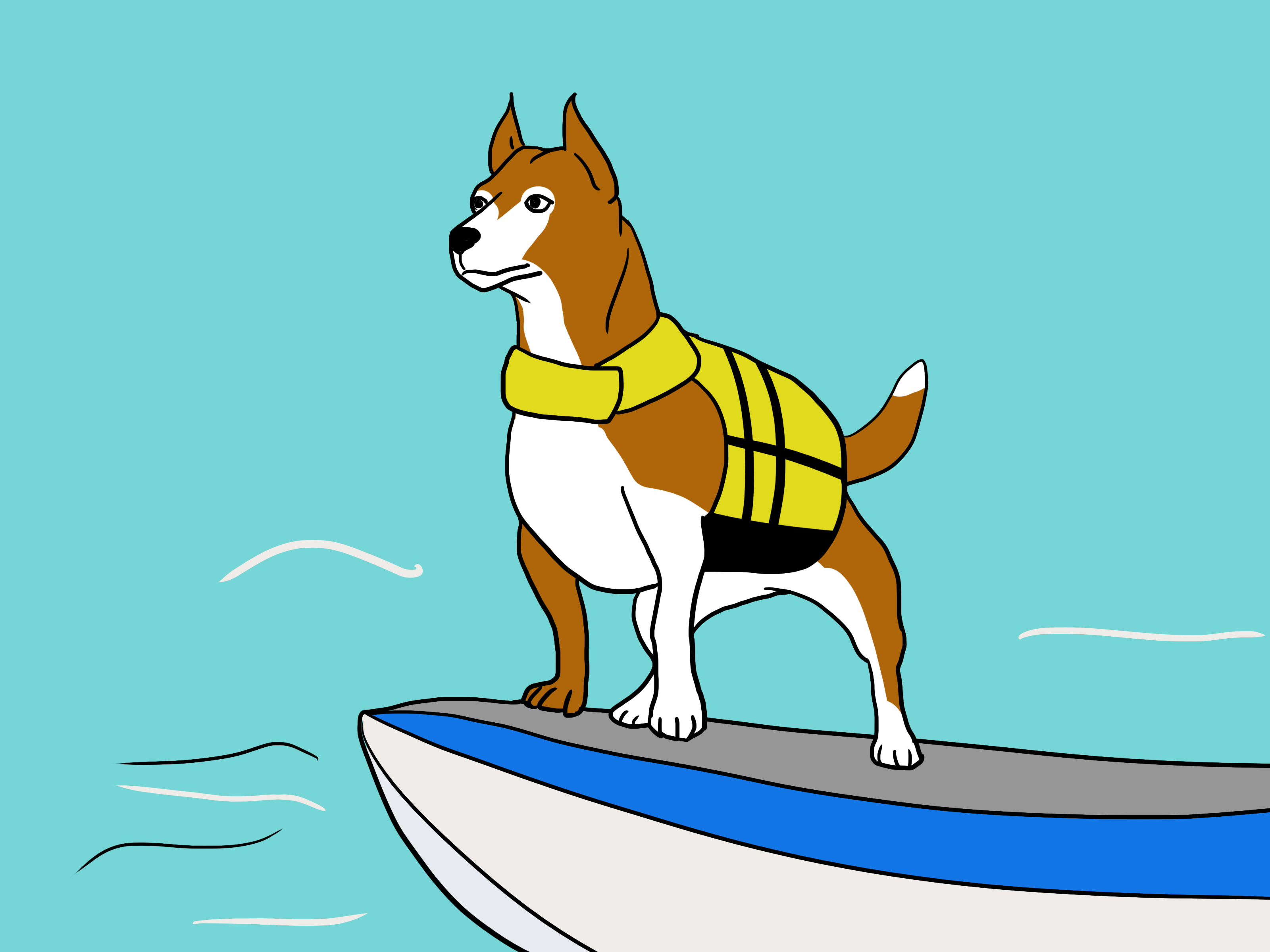 3200x2400 How To Choose A Life Jacket For Your Pet 7 Steps (With Pictures)