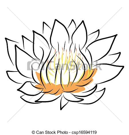 450x470 Hand Drawing Water Lily, Lotus, Flower. Vector Eps10 Vector Clip