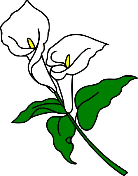 473x601 Calla Lily Clipart