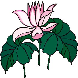 261x261 Water Lily Clip Art