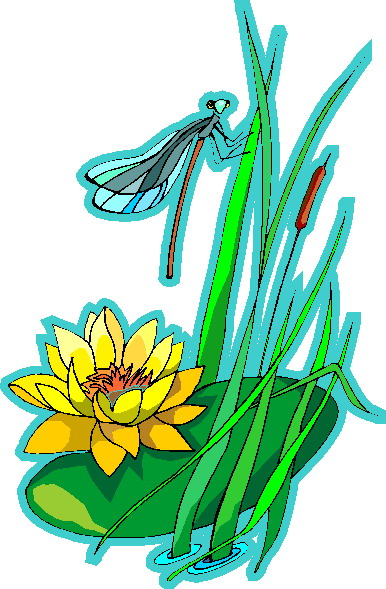 386x589 Water Lily Clip Art Flowers And Plants