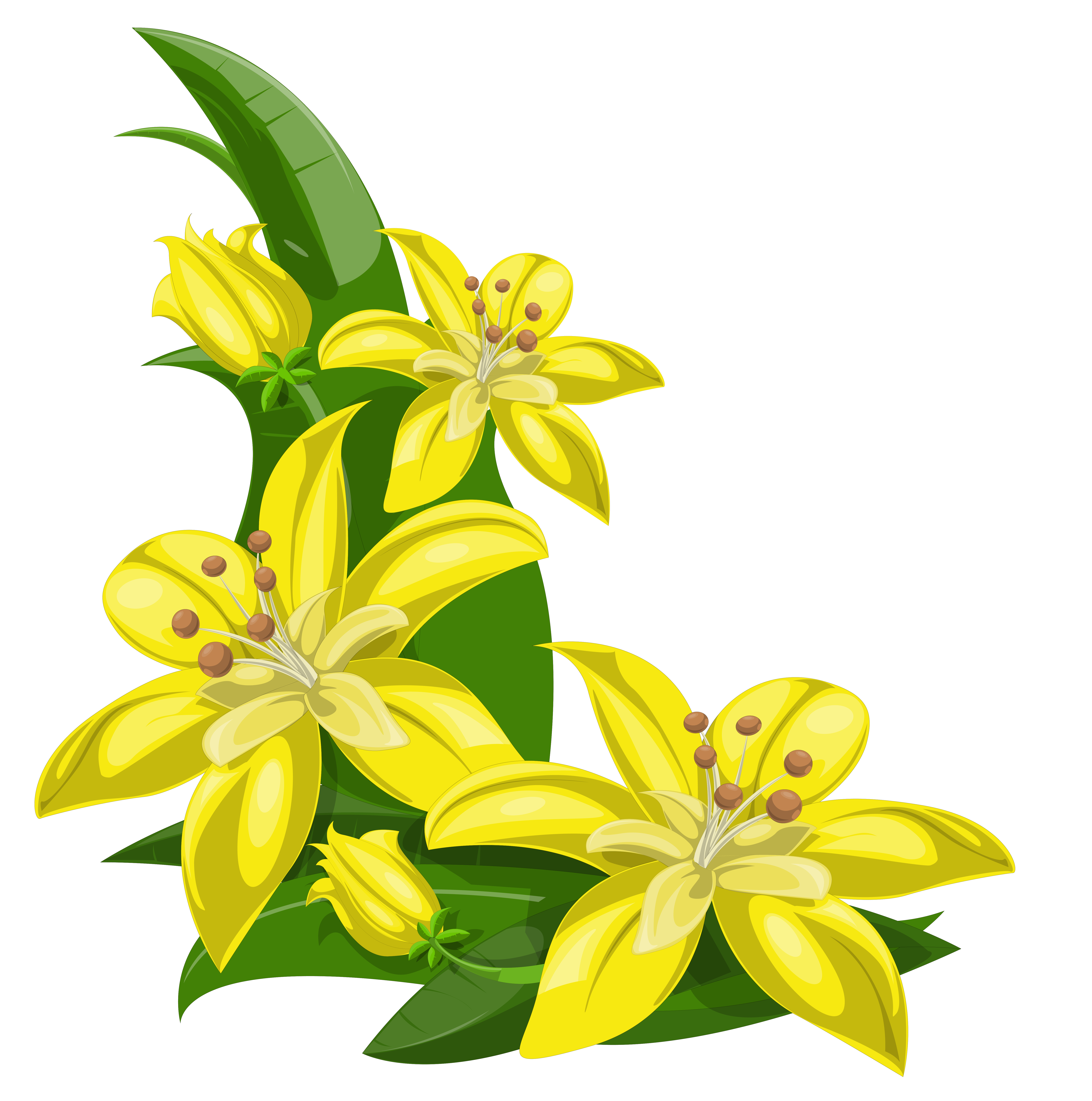 Lily flowers clipart at getdrawings free for personal use lily 6417x6469 flower decorations clipart amp flower decorations clip art images izmirmasajfo