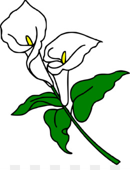 260x340 Free Download Callalily Arum Lily Easter Lily Flower Clip Art