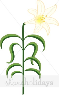 243x388 Luxurious And Splendid Lily Clipart Flower Clip Art Flowers