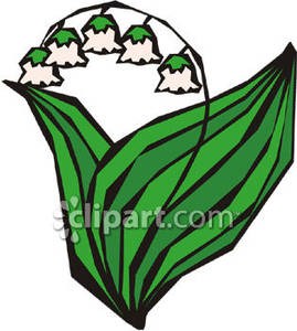 269x300 Cartoon Lily Of The Valley Flower