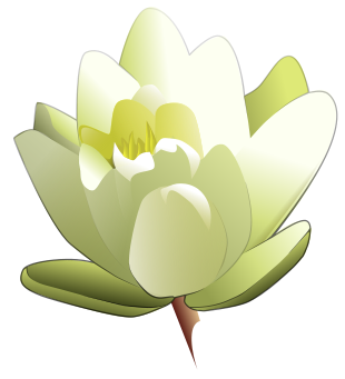 310x341 Free Lily Clipart