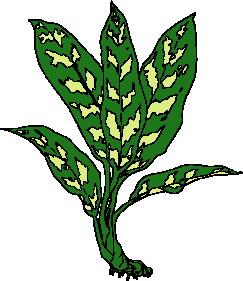 243x281 Leaves Clip Art