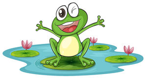 298x160 Frog On A Lily Pad Clipart 101 Clip Art