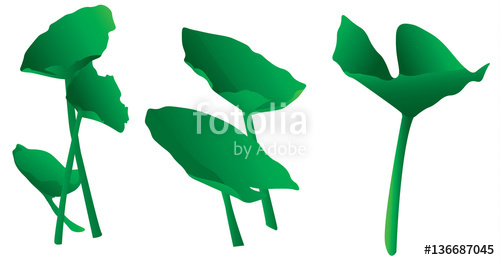 500x260 Variety Of Isolated Simple Green Lily Pads Or Aquatic Plants Clip