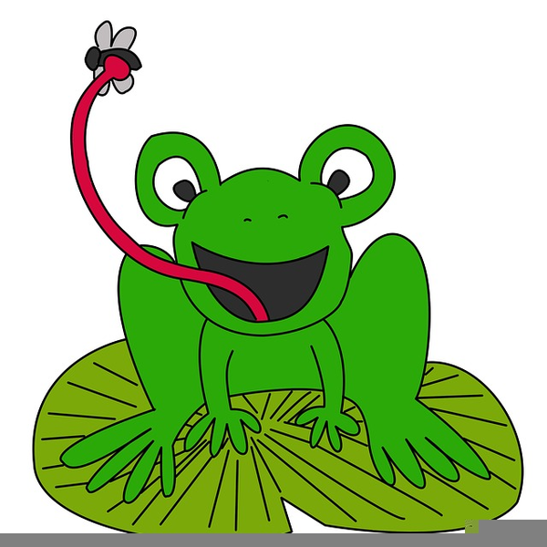 600x600 Cartoon Lily Pad Clipart Free Images