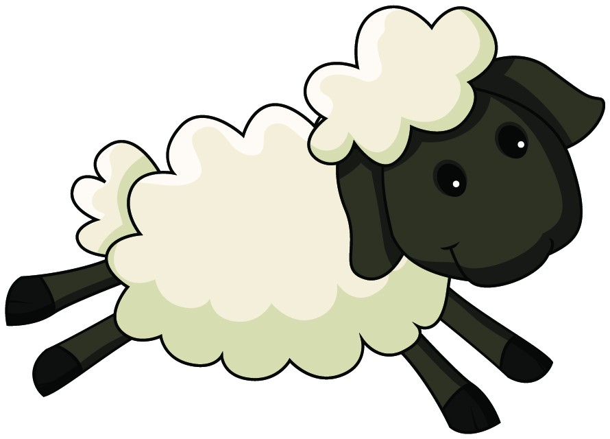 890x640 Sheep Clipart Cartoon