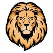 lion head clipart at getdrawings com free for personal use lion rh getdrawings com lion face images clip art baby lion face clipart