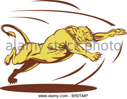 409x320 Big Cat Clipart Lion Lioness