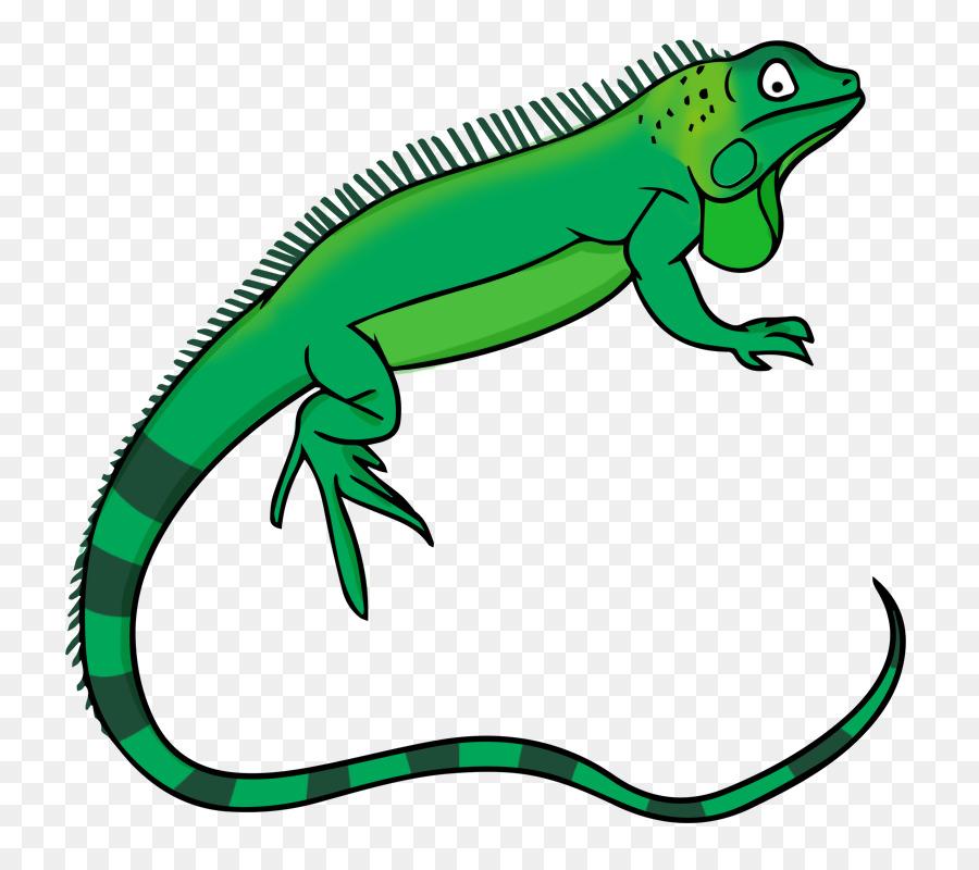 900x800 Green Iguana Lizard Free Content Clip Art