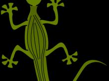 220x165 Lizard Clip Art Gecko Clip Art