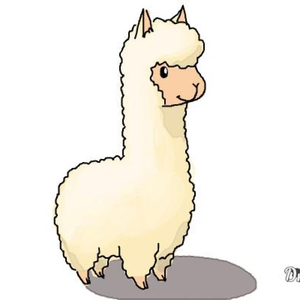 Llama Clipart at GetDrawings | Free download