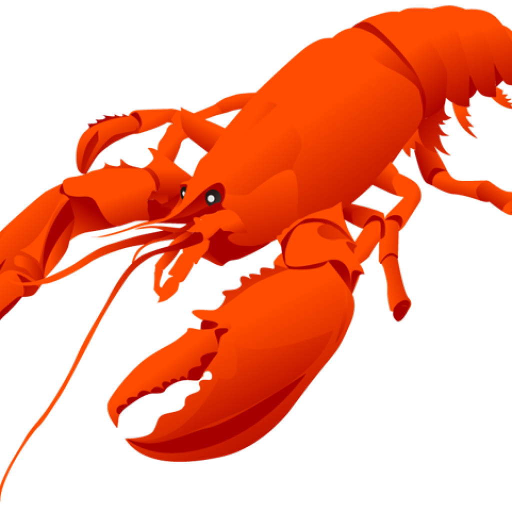 1024x1024 Lobster Clipart Free Clipart