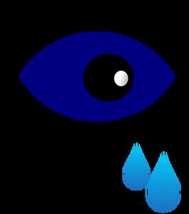 266x300 730 Free Vector Eye Glasses Public Domain Vectors