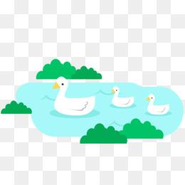 260x260 Common Loon Drawing Bird Duck Clip Art