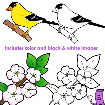 350x350 Us State Birds And Us State Flowers Clip Art Bundle By Dancing
