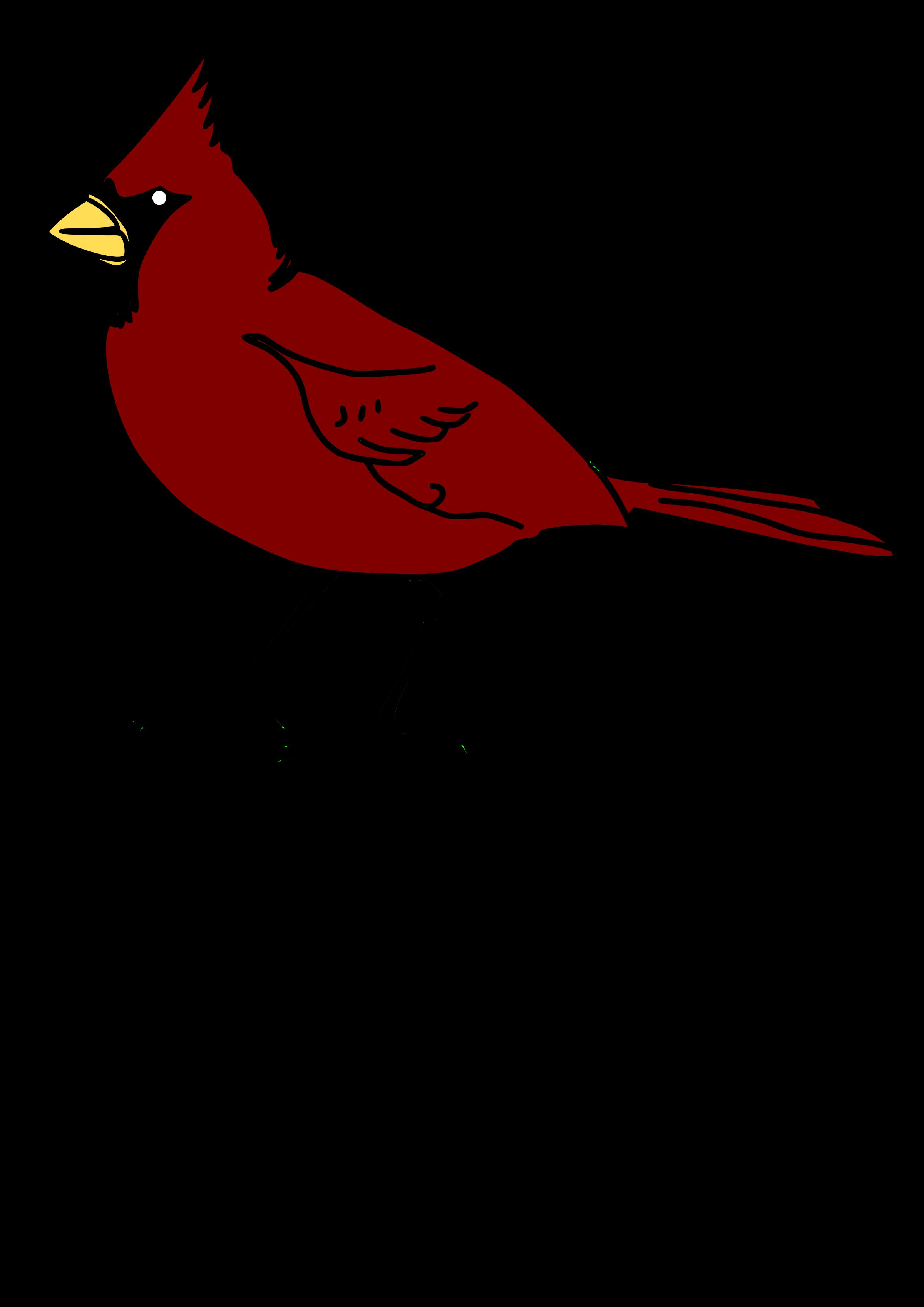 2400x3394 Clipart Cardinal Cardinal Clipart