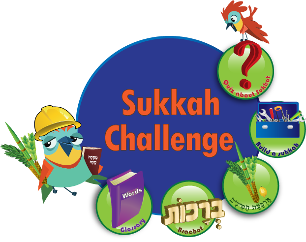622x492 Sukkah Challenge