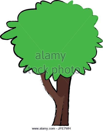 424x540 Willow Tree Stock Vector Images