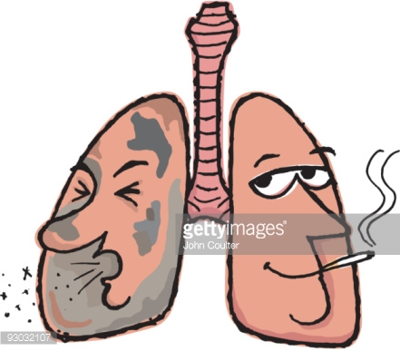 441x387 Collection Of Cartoon Drawing Of Lungs High Quality, Free
