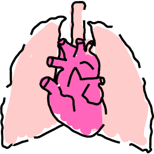300x300 Sensational Lungs Clipart Free Download Lung Clip Art Small