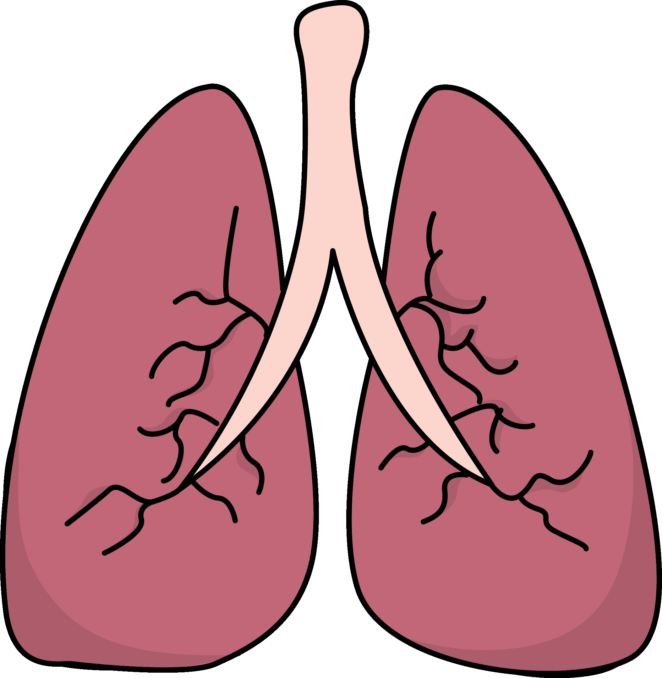2107x2160 Unique Lungs Clipart Design