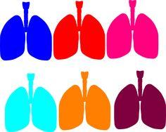 236x188 Lung Blue Clip Art