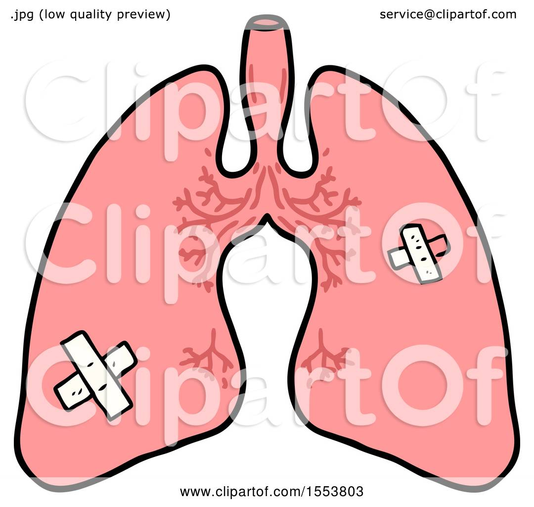 1080x1024 Cartoon Lungs By Lineartestpilot