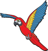 170x180 Search Results For Parrot Macaw Parrot