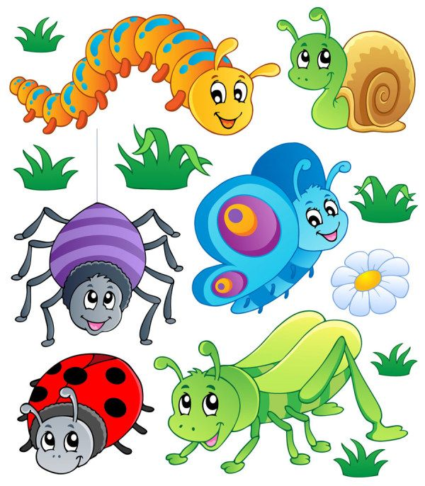 600x686 Best Insects Clip Art Images On Insects, Clip Art