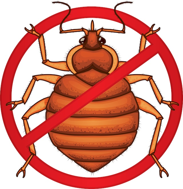 640x662 Bed Bug Clipart No Bed Bugs Sign