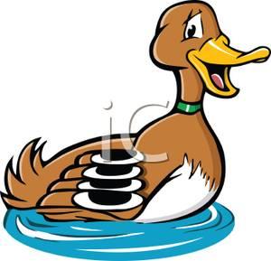 300x289 Cartoon Of A Mallard Duck