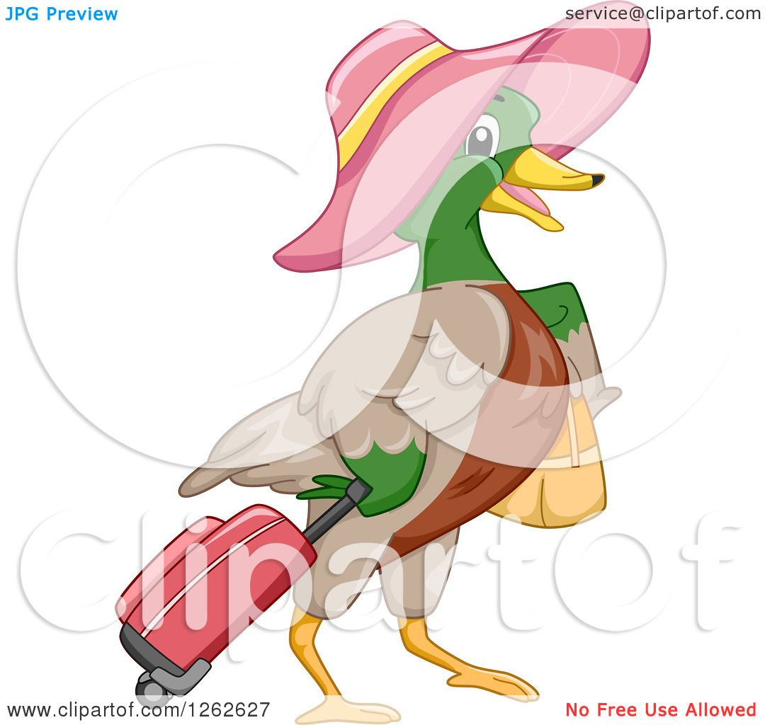 1080x1024 Clipart Of A Mallard Duck Wearing A Hat And Pulling Luggage