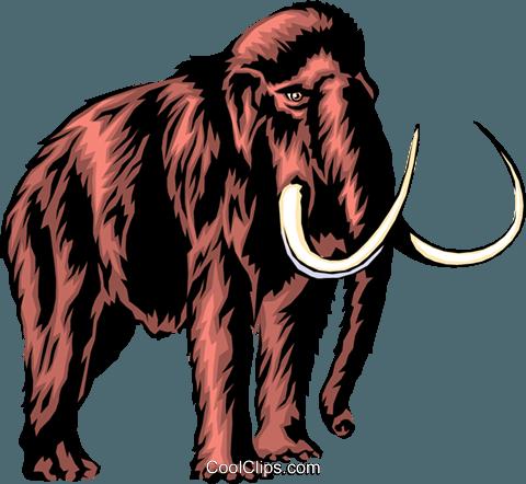 480x442 Mammoth Royalty Free Vector Clip Art Illustration Anim0293