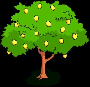 304x294 Tree Clipart Mango Fruit