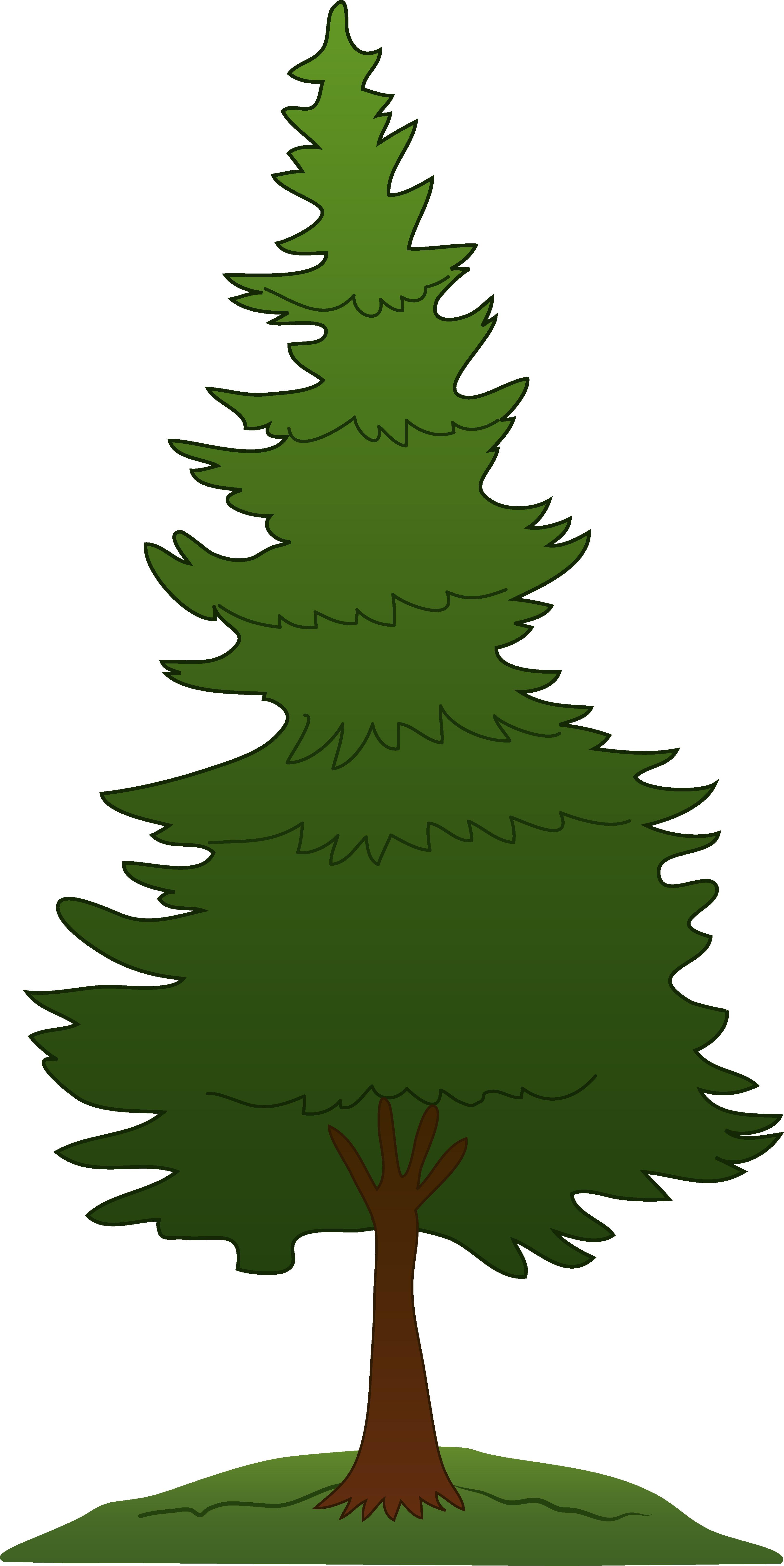 3256x6498 Clip Art Tree Outline Clipart Panda