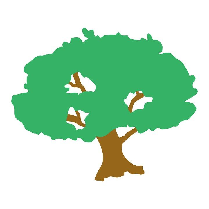 720x720 Clip Art Trees