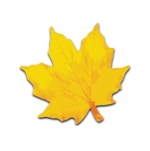 297x299 Maple Leaf Clip Art
