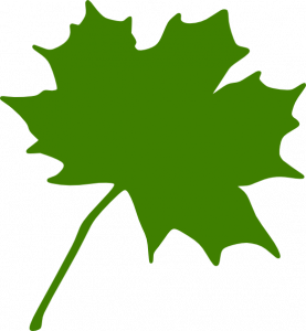 277x300 Maple Leaf Clipart Green Maple Leaf Clip Art