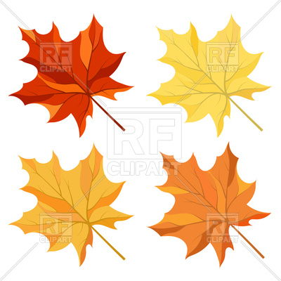 400x400 Autumn Maple Leaves Royalty Free Vector Clip Art Image