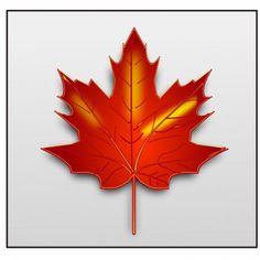 236x236 Maple Leaf Clip Art Clipartion Com Klipart Clip