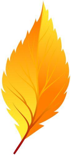 229x500 Leaf Clip Art Orange Maple Leaf Clip Art Preschool