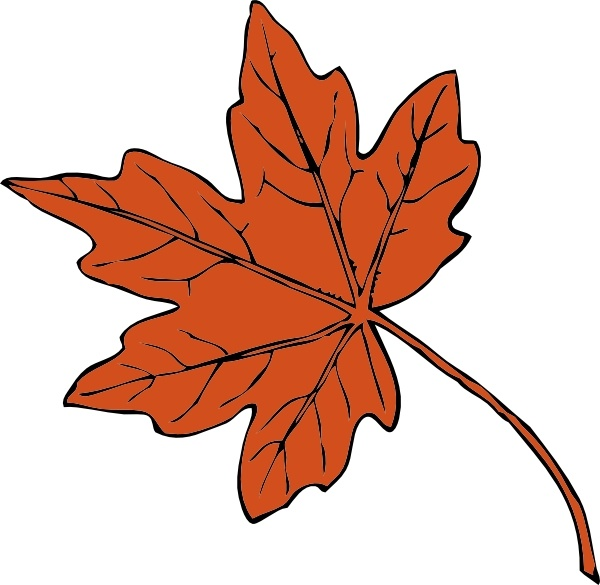 600x585 Maple Leaf Clip Art Maple Leaf Clip Art Free Vector In Open Office