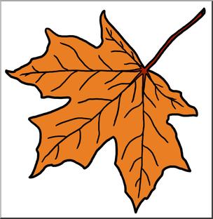 304x312 Clip Art Leaf Sugar Maple Autumn 2 Color I Abcteach
